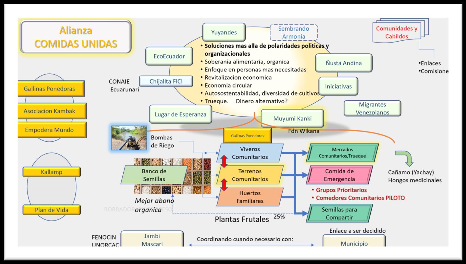 Alianza Comidas Unidas Graphic